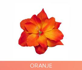 bloemen_12_oranje.jpg