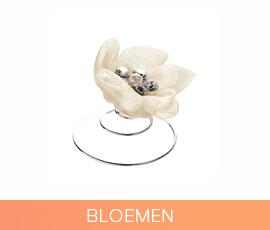 curlies_03_bloemen.jpg
