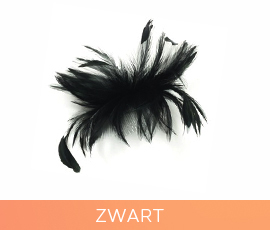 fascinators_03_zwart.jpg