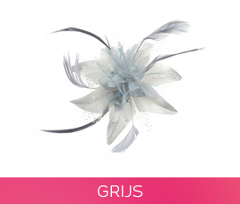 fascinators_05_grijs.jpg