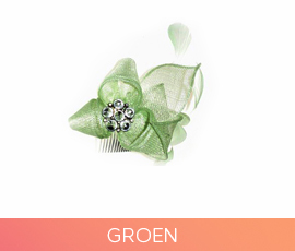 fascinators_07_groen.jpg