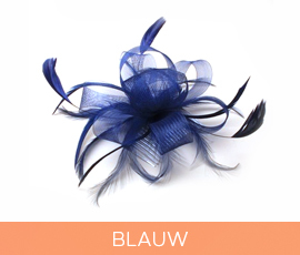 fascinators_08_blauw.jpg