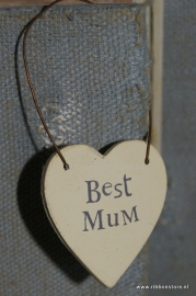 Wh2011 Best Mum...