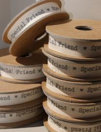 PR12105 Special Friend