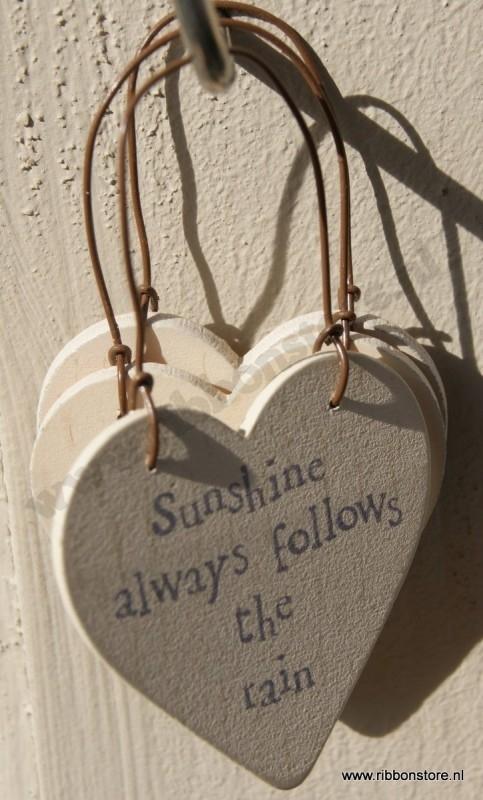 Sunshine always follows the rain