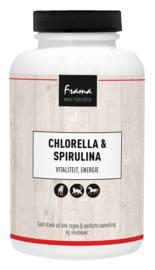 Chlorella & Spirulina 500 tabl.