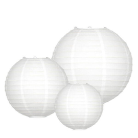 Witte lampion pakketten