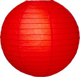 Lampion rood papier 50 cm