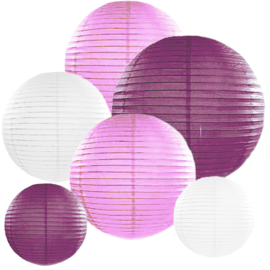 Lampion pakket 10 stuks lila-paars-wit