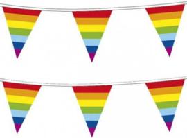 Vlaggenlijn regenboog vlaggetjes 10 meter
