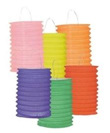 Papieren treklampion uni kleur-6stuks