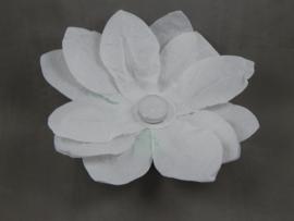 Waterlantaarn lotusbloem wit 25 stuks
