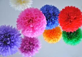 Pompon kleurmix 50 stuks