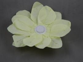 Waterlantaarn lotusbloem geel 30 cm
