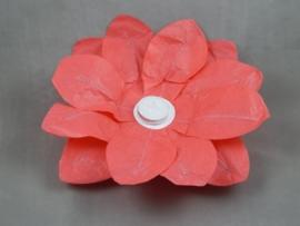 Waterlantaarn lotusbloem rood 30 cm