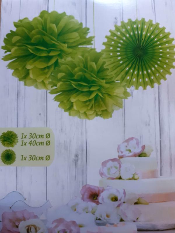 Set pompons met papieren waaier - Groen
