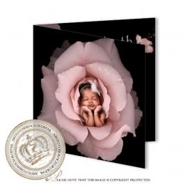 Sprookjes Geboortekaartje GB683 FC2 Pink
