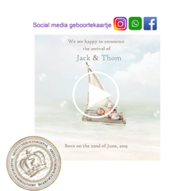 Social Media Geboortekaartje IGB033 Blue (Tweeling)