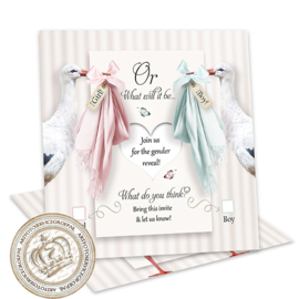 Baby Gender Reveal Party Invites GR026 (pakket: 12 invites)