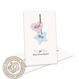 Baby Gender Reveal Party Invites GR084 (pakket 8 invites + Labels)