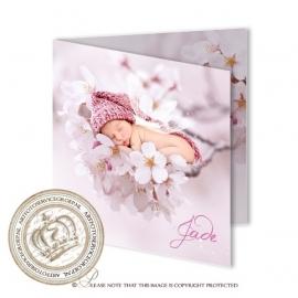 Sprookjes Geboortekaartje GB889 FC2 Pink