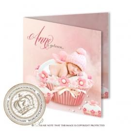 Sprookjes Geboortekaartje GB468 FC2 Pink
