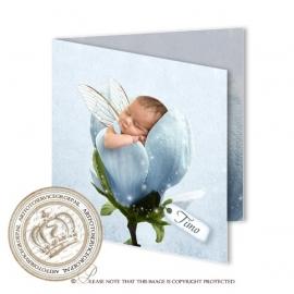 Sprookjes Geboortekaartje GB274 FC2  Blue