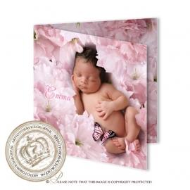 Sprookjes Geboortekaartje GB415 FC2 Pink
