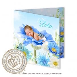 Sprookjes Geboortekaartje GB633 FC2 Blue
