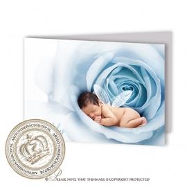 Sprookjes Geboortekaartje GB248 FC2 Blue