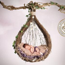 BD - The nest (Purple)