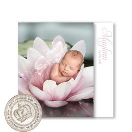 Sprookjes Geboortekaartje GB954 HC3 Pink