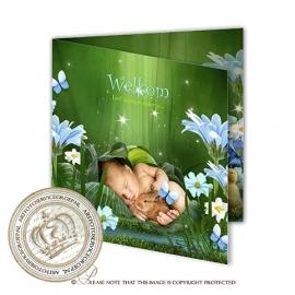 Sprookjes Geboortekaartje GB605 FC2 Blue