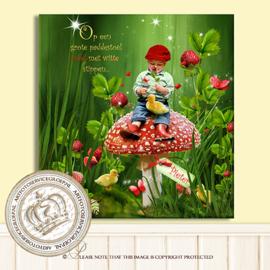 Sprookjesfoto - Fairyland storybook