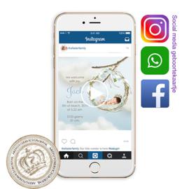 Social Media Geboortekaartje IGB238 Blue