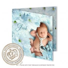 Sprookjes Geboortekaartje GB415 FC2 Blue