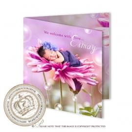 Sprookjes Geboortekaartje GB225 FC2 Pink