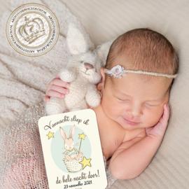 Milestone Baby cards  - Little Bunny