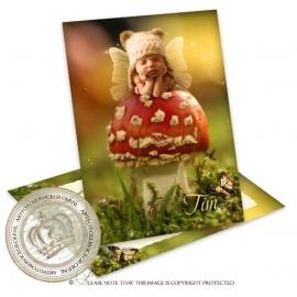 Sprookjes Geboortekaartje GB261