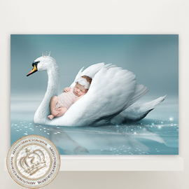Digitale Droomfoto -  The Swan Lake