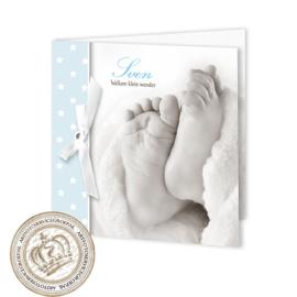 Geboortekaartje LC201 FC2 Blue