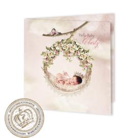 Sprookjesgeboortekaartje GB238 FC2 Pink