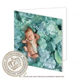 Sprookjes Geboortekaartje GB523 FC2 Blue