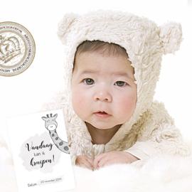 Milestone Baby cards  - Hello little me