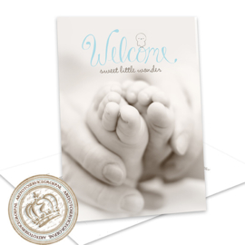 Invul Geboortekaartje FS279 Blue (12 kaarten)