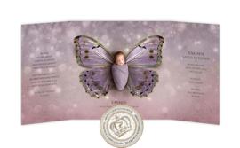Sprookjes Geboortekaartje GB362 DD (Purple)