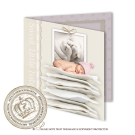 Sprookjes Geboortekaartje GB710 B FC2 Pink