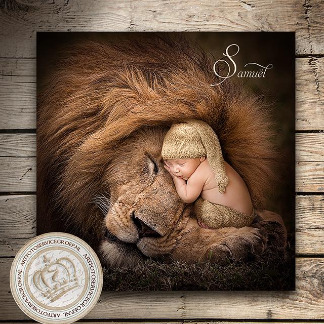 Fantasy Art Photo - The king