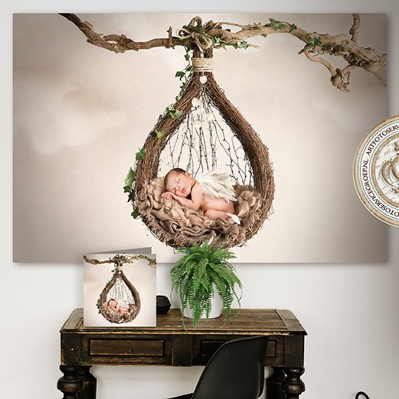 BD - The nest
