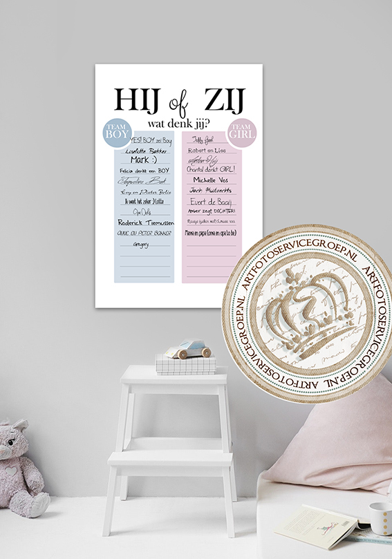 Gender reveal hardboard invul poster